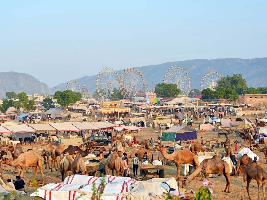 itinerary_pushkar_pushkarfair
