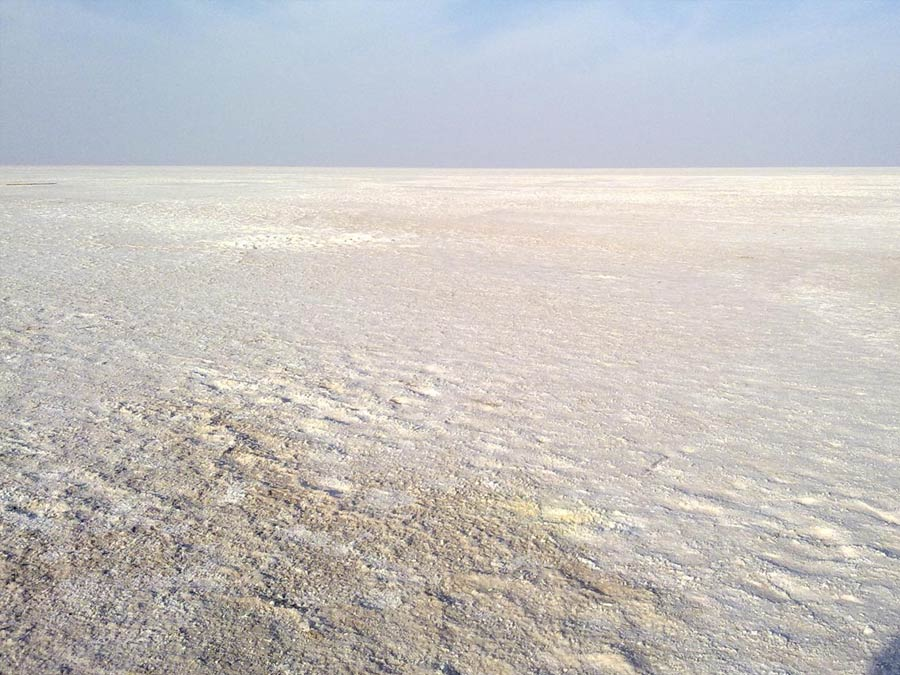 itinerary_rannofkutch_salt Golden Triangle Tour with Gujarat