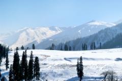 natural-scene-mountain-shimla_14349-22 HIMACHAL 11NIGHT/12 DAYS  TOUR PACKAGE
