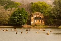itinerary_ranthambore_2 Jaipur Ranthambore Day Trip