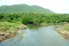 itinerary_gir_park 9 Days Best of Gujarat with wildlife Tour Package